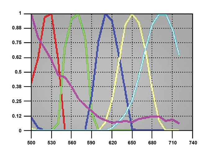 A demonstration of 5+ DAPI-plex imaging, unmixing, and display. The individual channels can be separately analyzed and spatial statistics computed as desired. Sample courtesy of Dr. Stefania Pittaluga/National Cancer Institute. Spectral analysis courtesy of Dr. Richard Levenson/UC Davis Health.