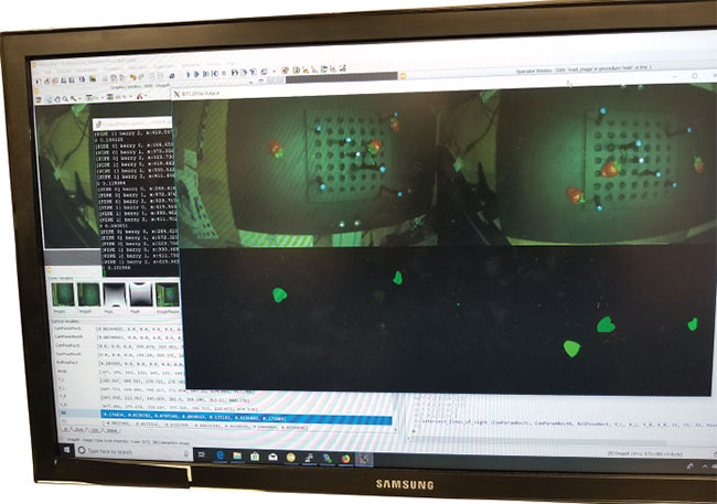 Image processing software detects berries. Courtesy of Harvest CROO Robotics.