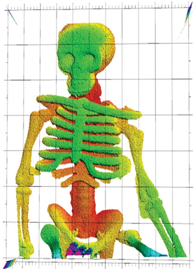"NIST researchers demonstrated that laser ranging could ""see through flames"" to make this image of a plastic skeleton toy. Laser ranging captured the skeleton's complex 3D shape, with depth indicated by false color. The plastic did not melt or deform in the fire, unlike pieces of chocolate. Courtesy of Baumann/NIST."