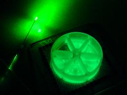 Optochemogenetics for stroke research, Emory University School of Medicine.