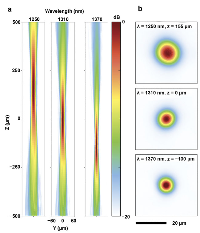 Figure 2. The intensity profiles of the nano-optic endoscope output beam in the tangential (a) and focal (b) planes. Courtesy of Hamid Pahlevaninezhad and Yao-Wei Huang.