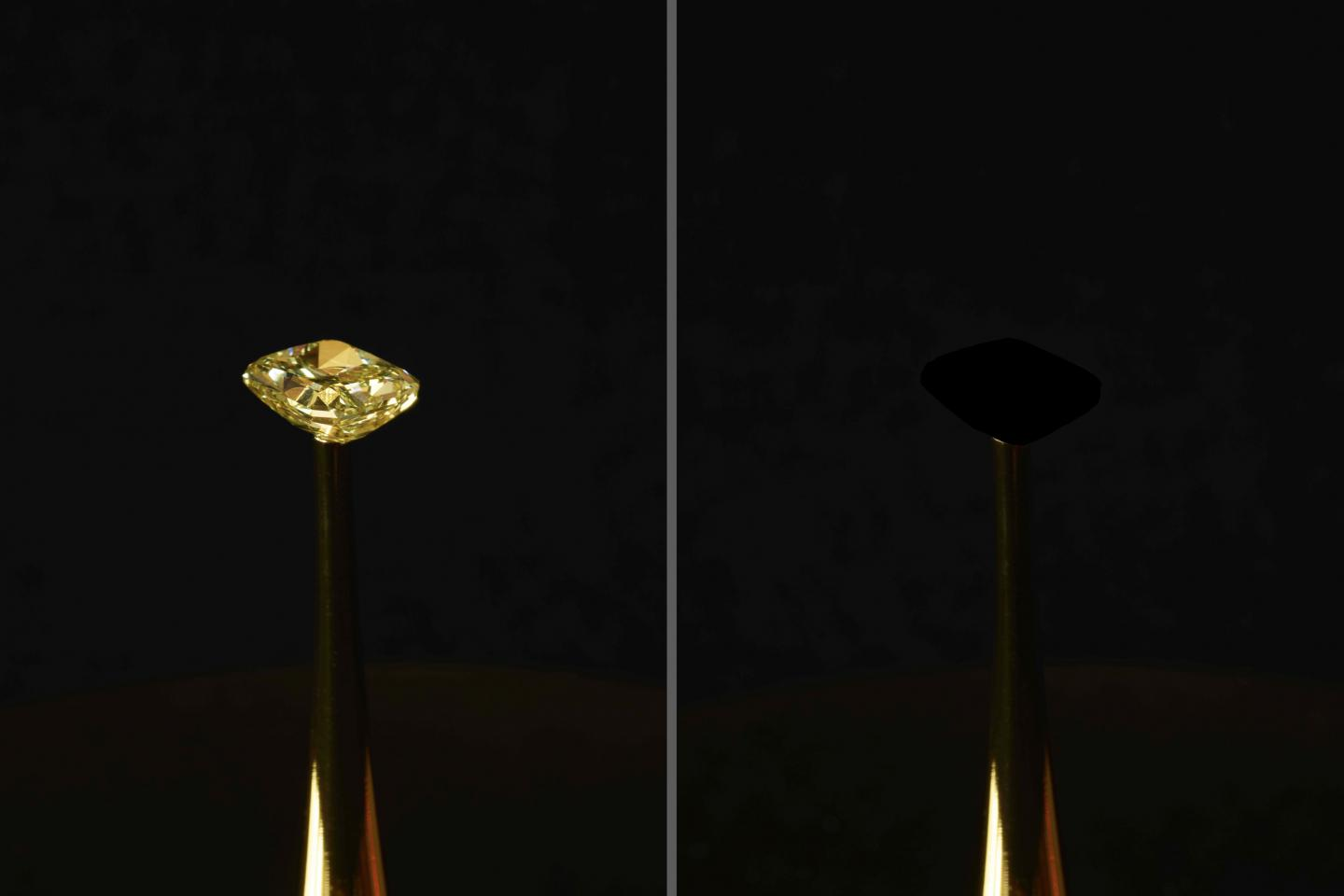 The Redemption of Vanity is a work of art by MIT artist-in-residence Diemut Strebe. A 16.78 carat naturaI yellow diamond (value $2M), the most brilliant material on earth, is covered with light-absorptive carbon nanotubes, which make the diamond appear to disappear. Courtesy of Diemut Strebe.
