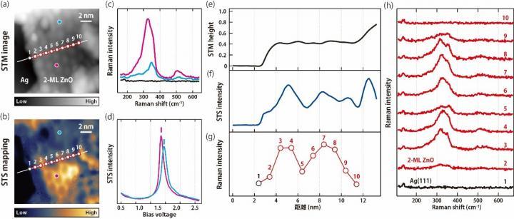 Tip enhanced resonanance Raman spectroscopy, Takashi Kumagai, Fritz-Haber Institute.