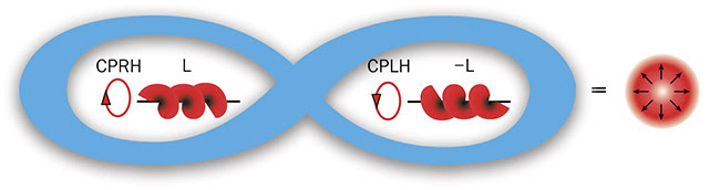 Figure 1. A representation of a radially polarized Majorana-like LG beam. A Majorana-like beam has its SAM and OAM (±L or ±l) entangled in a single particle. Bessel beams are not Majorana at z. CPRH: circular polarization right hand; CPLH: circular polarization left hand. Courtesy of Robert Alfano/The City College of New York News.