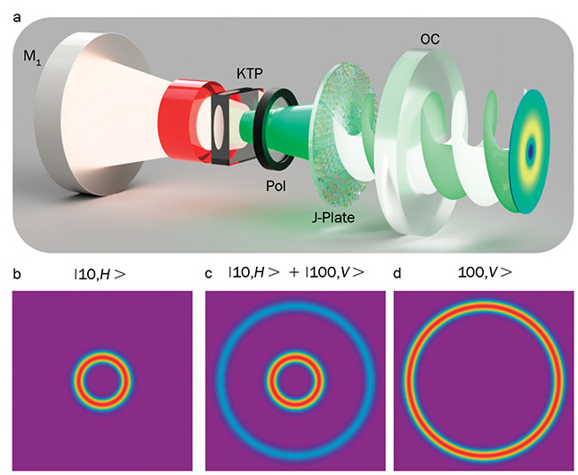Figure 2. An illustration of a laser cavity with an intracavity nonlinear crystal (KTP), polarizer (Pol), and metasurface (J-plate), excited by an infrared pump, with the green light emerging from the output coupler (OC) mirror (a). Calculated states from the laser with OAM order 10 (b), OAM order 100 (d), and the superposition (c). Figure 2(a) courtesy of Reference 3. Figure 2(b,c,d) courtesy of Hend Soor.