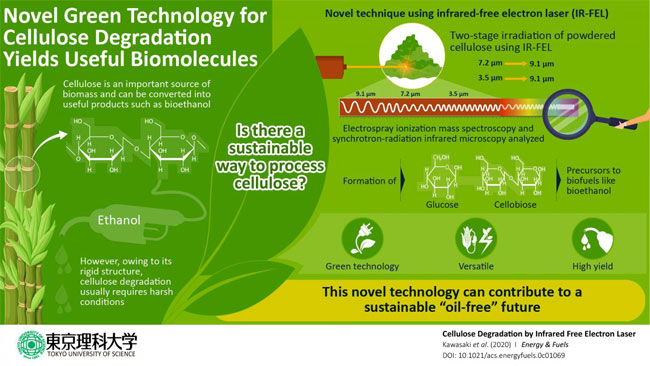A novel laser-based strategy for the effective degradation of cellulose into useful products. Courtesy of Tokyo University of Science.