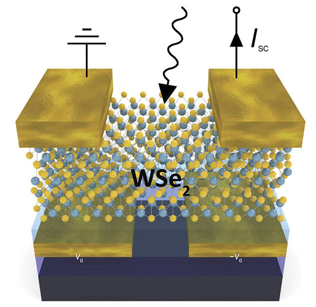 Vienna University of Technology's Thomas Müller developed individually tunable tungsten diselenide (WSe2) photodiodes that respond to light proportionately and can act as an artificial neural network. SC: semiconductor; VG/-VG: voltage pair. Courtesy of Vienna University of Technology.