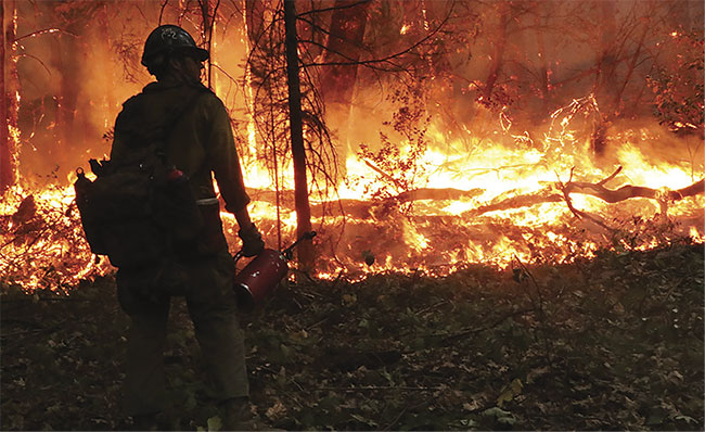 A firefighter at the 2018 Delta fire near Lakehead, Calif., in the Shasta-Trinity National Forest. Courtesy of U.S. Forest Service.