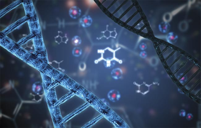 Smart Probe Captures Biomarker Sequence