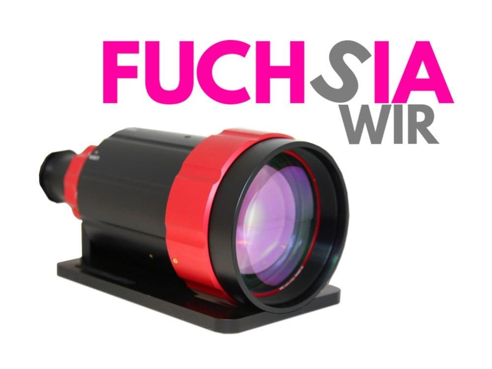 Fuchsia Series