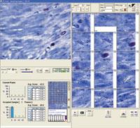 AppliedSpectralImaging.jpg