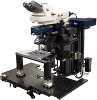Multiphoton Microscope