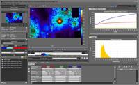 Flir Systems ResearchIR 4.2