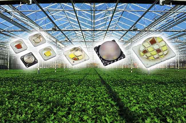 Horticultural LED Emitters