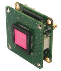 InGaAs Sensor