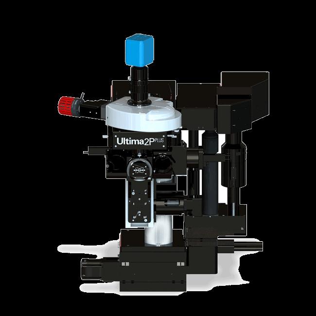 Ultima 2Pplus Multiphoton Imaging