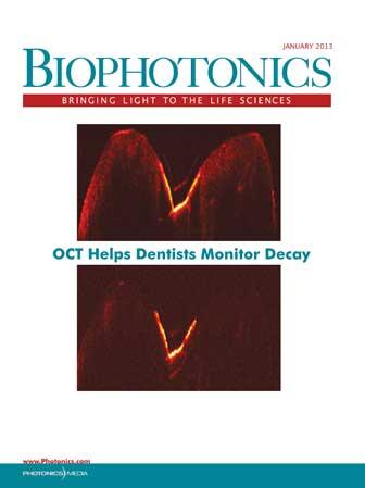 BioPhotonics: January 2013