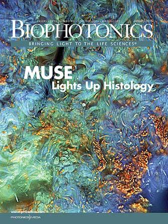 BioPhotonics: January 2018