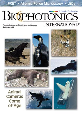 BioPhotonics: December 2007