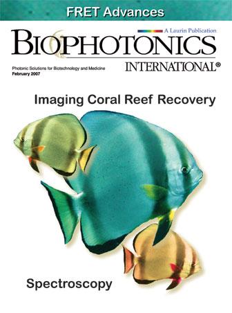BioPhotonics: February 2007