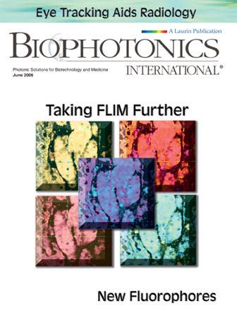 BioPhotonics: June 2006