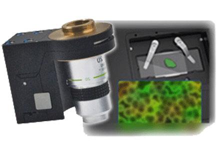 PI (Physik Instrumente) - Piezo Stages for Spectroscopy, Microscopy & Imaging